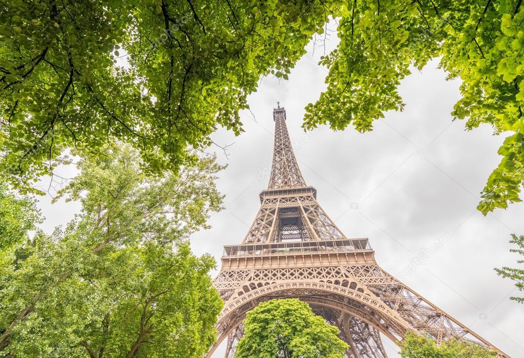 París. Hermoso Tour Eiffel rodeado y enmarcado por el árbol verde ...