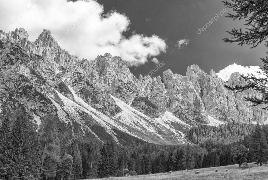 Фотообои Потрясающие летние Альпы панорама