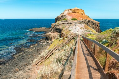 Cape Schanck coastline in Australia