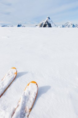 Ski tips, snow field and mountain landscape in background (the M