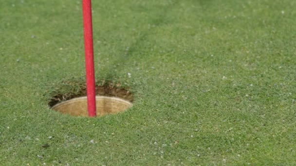 Golfer putting golf ball into hole