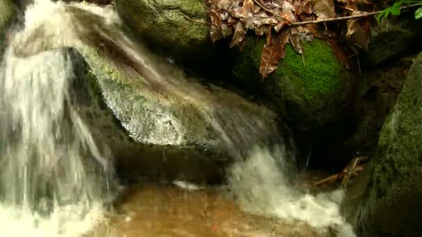 malý vodopád v lese