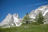 Mountain landscape view