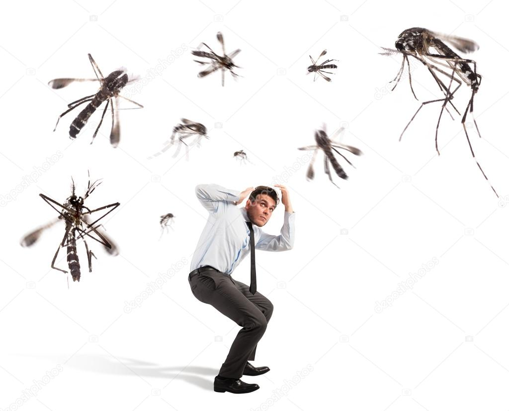 Αποτέλεσμα εικόνας για ανθρωποι και κουνουπια