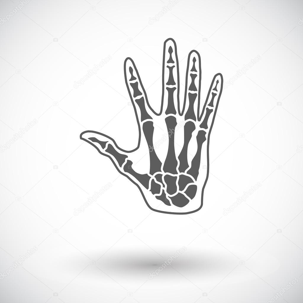 Anatomie hand — Stockvektor © leshkasmok #68615063