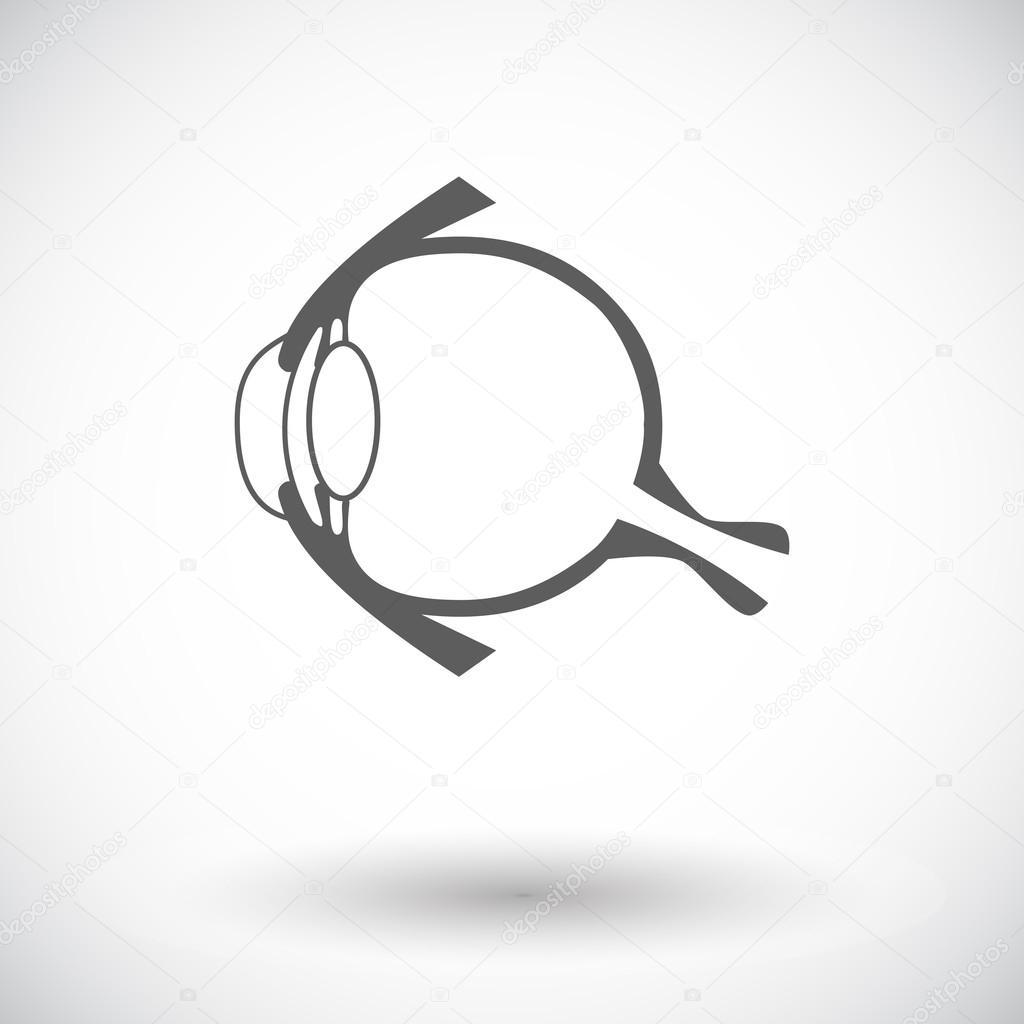 Anatomie Auge — Stockvektor © leshkasmok #69011519