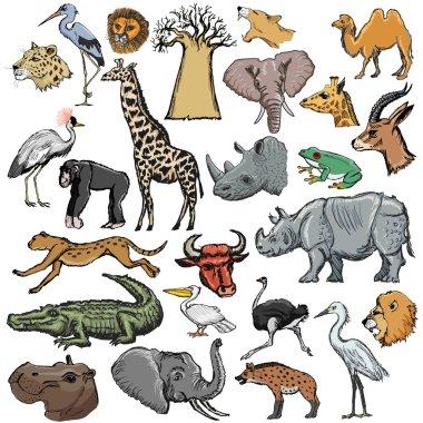 set of animals with elephant, crocodile, lion, rhinoceros, giraf