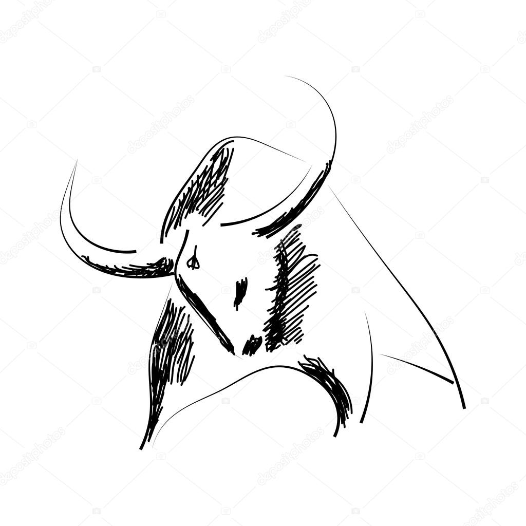 Sketch black silhouette of a bull isolated on a white background