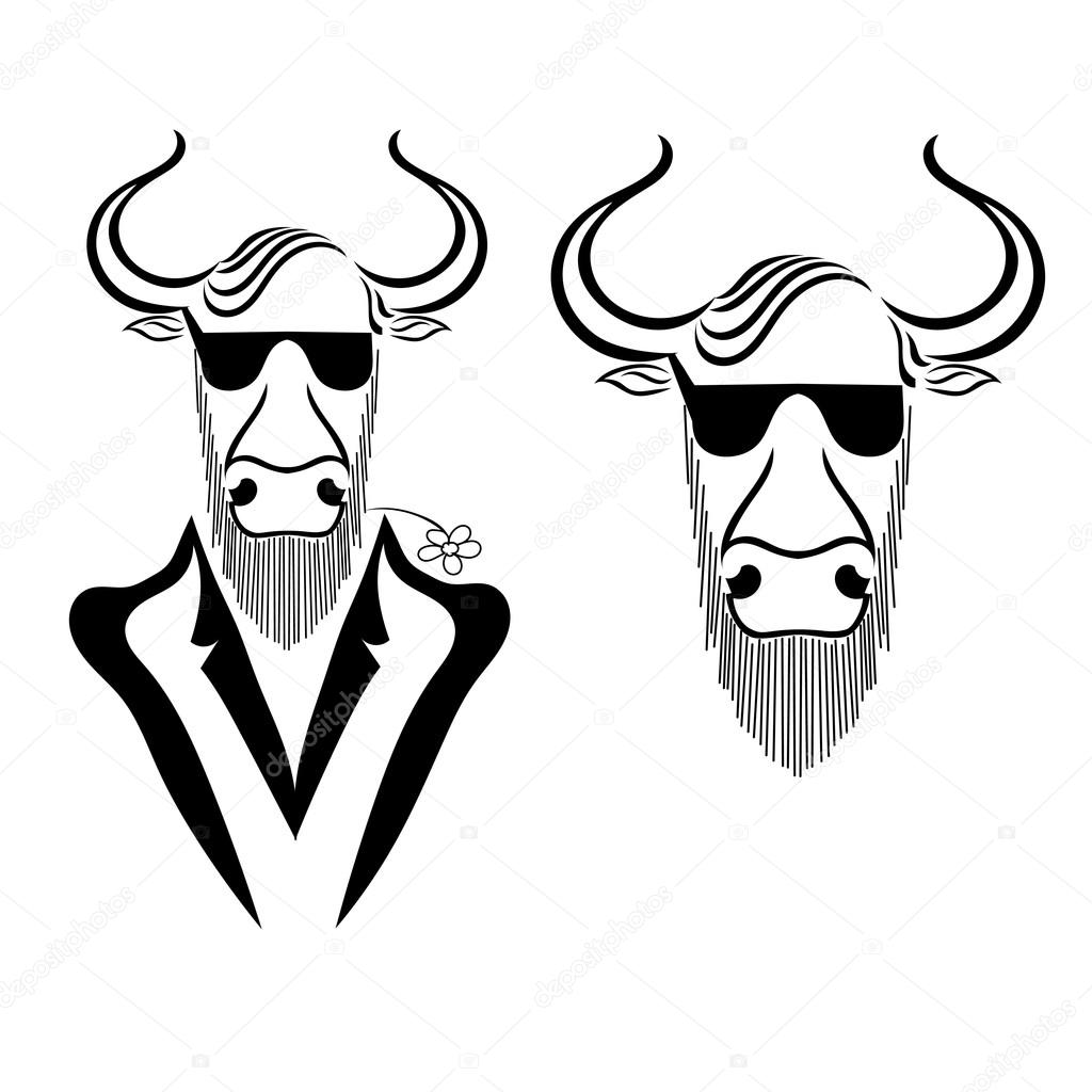 Set a bull in a jacket with chamomile in teeth and glasses isola