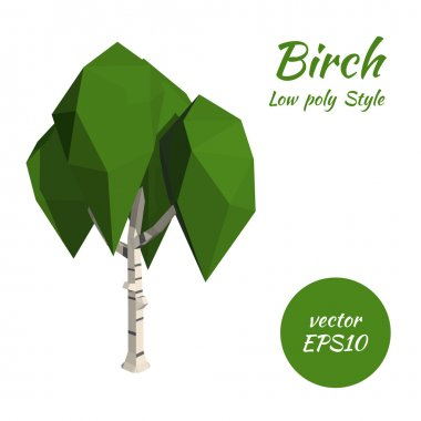 Birch in low poly style. Vector illustration