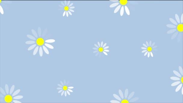 Nyári camomiles virágok animáció