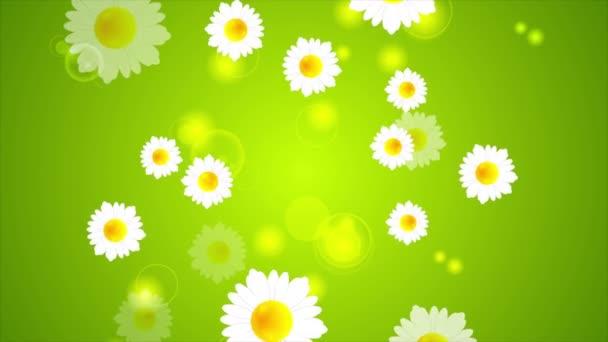 Zöld nyári animáció a camomiles