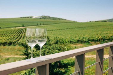 "Картина, постер, плакат, фотообои ""виноград, два бокала с белым вином на фоне виноградника"", артикул 504461154"