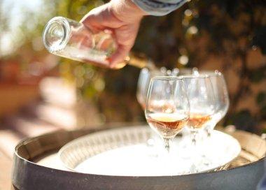 """Картина, постер, плакат, фотообои """"много бокалов и бутылка розового вина в осеннем винограднике, дегустация концепции. вино наливается в стакан"""", артикул 504461800"""