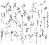 Kolekce s stylizované lesní květiny a byliny izolovaných na bílém. Černá a bílá silueta. Objekty pro návrh, oznámení, blahopřání, plakáty, reklama.