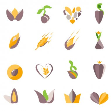 Stylized corns and seeds. Set with different abstract trendy symbols. Modern eco logotypes for your design projects. Flat style. icon
