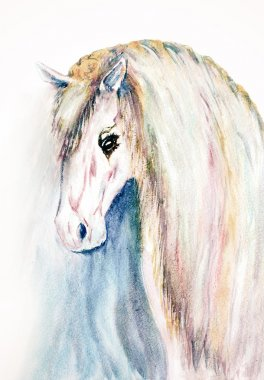watercolor hand drawn horse face
