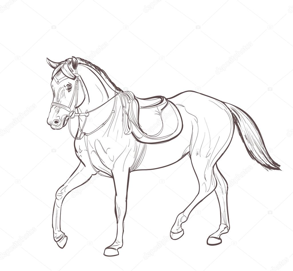 Horse Line Art Drawing Vector Stock Vector C Ghenadie 122367256