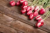 krásné tulipány na dřevěné pozadí