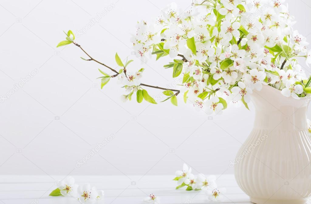 spring white flowers on white background