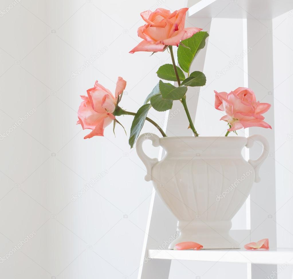 bouquet of roses in vase on white background