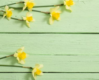 yellow flowers on green wooden background