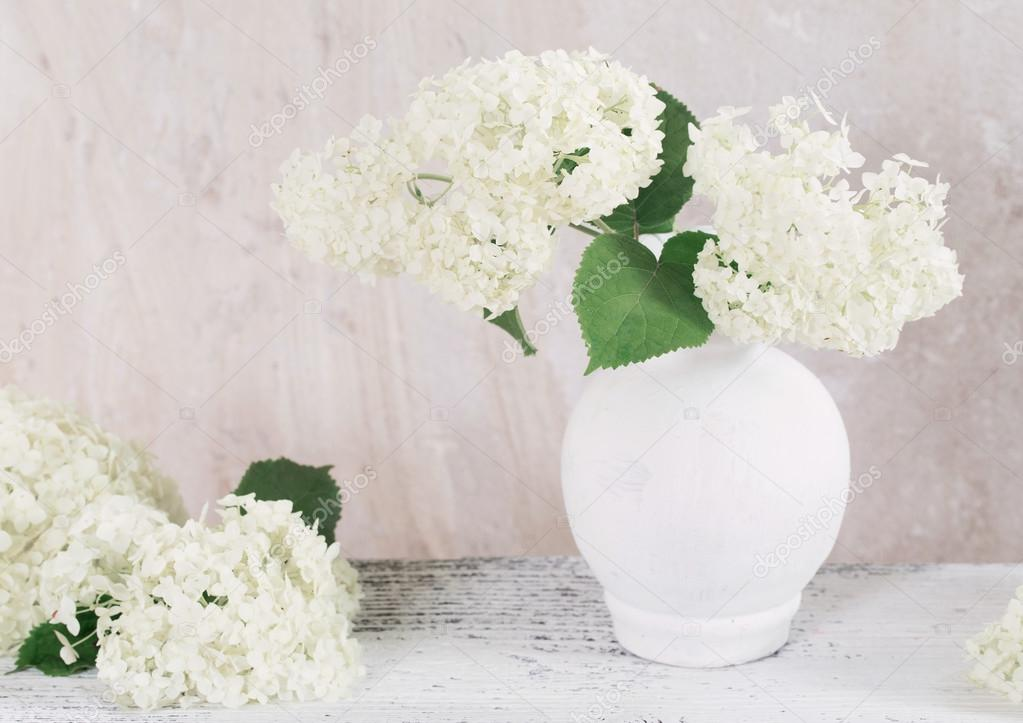 hydrangea in white vase on grunge background