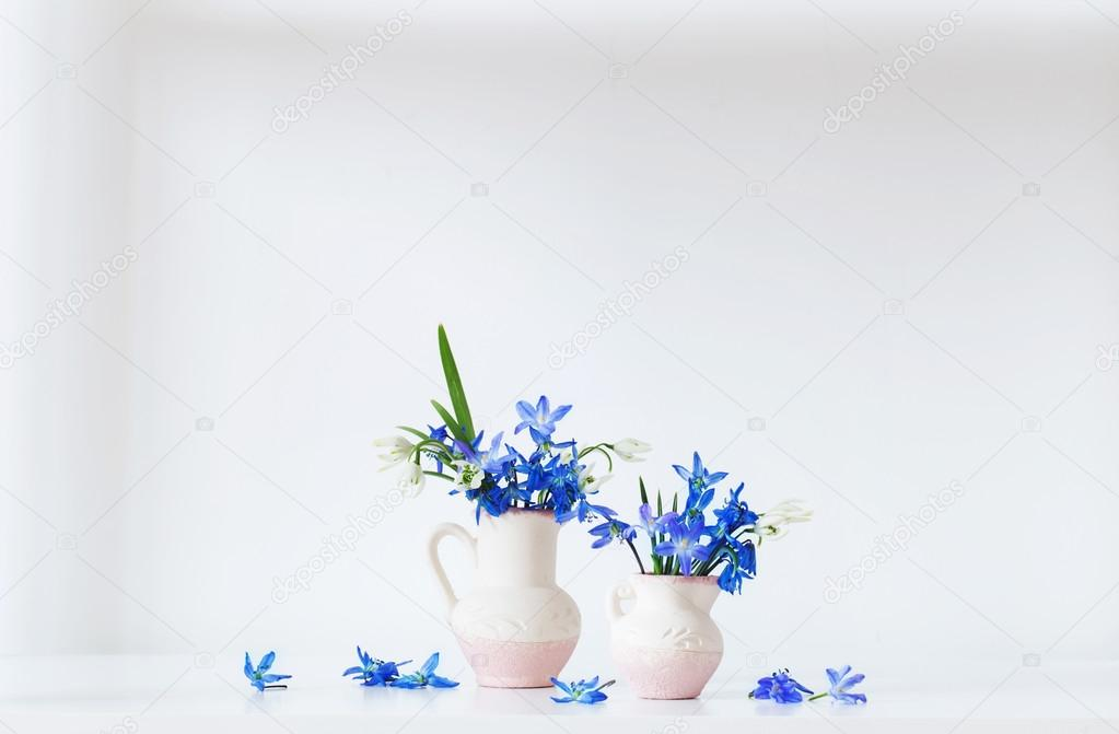 Still life with spring blue flowers