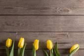 Fotografie žluté tulipány dřevěný stůl pozadí