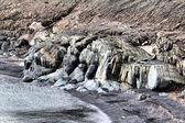 Versteinerte Dinosaurier. Das Ufer des Barentssee und Abrieb. arktisch