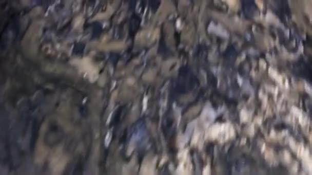 Netopýři se vznášejí u vchodu do jeskyně