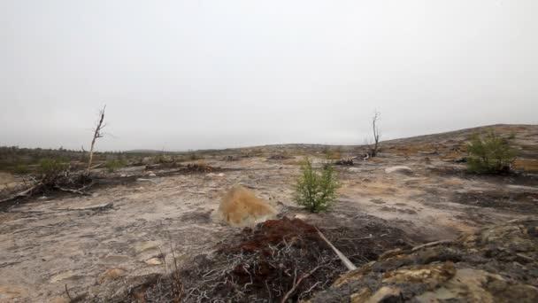 Zničeného muže arktické tundře