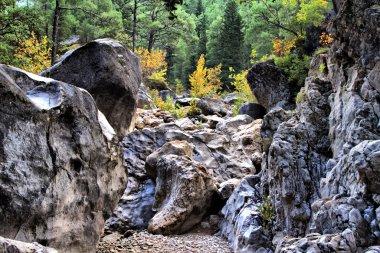 stream in  mountains in autumn