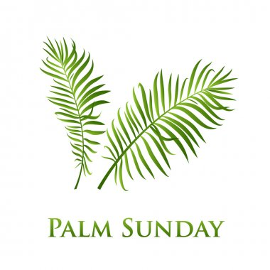 Palm leafs vector icon. Vector illustration  for the Christian holiday Palm Sunday.