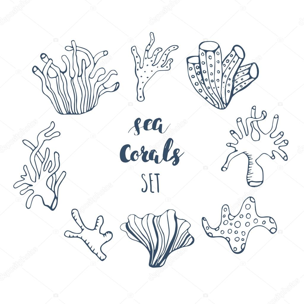 Superb Set Of Hand Drawn Underwater Coral Reef Elements. Vector Design For Your  Sea Life Illustration