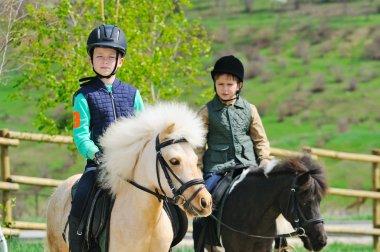 Two boys with pony