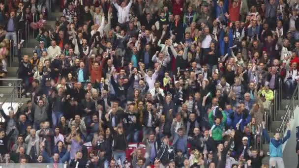 Fans Celebrate A Goal.
