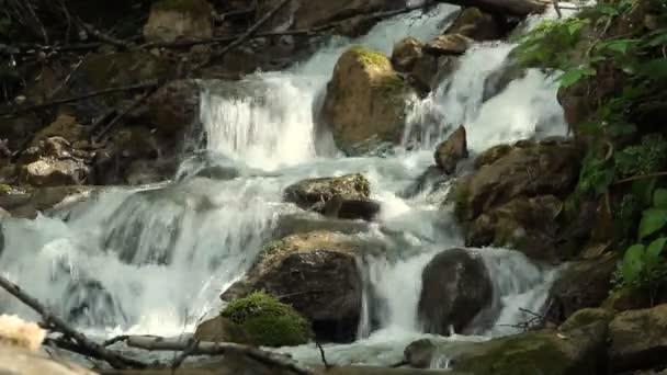 Čisté pitné vody lesní potoka přes skály