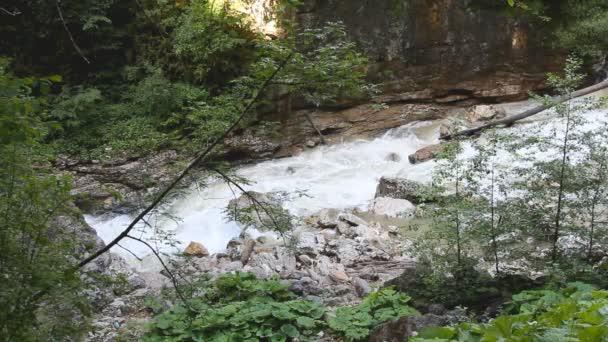 Mountain River Großer Haaraufstoßer