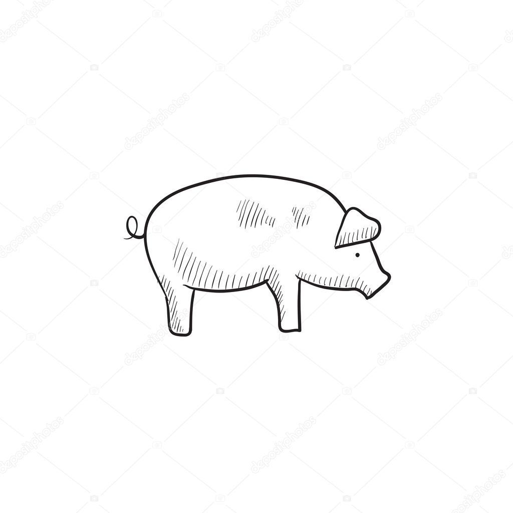 Icono de esbozo de cerdo — Vector de stock © rastudio #112200894