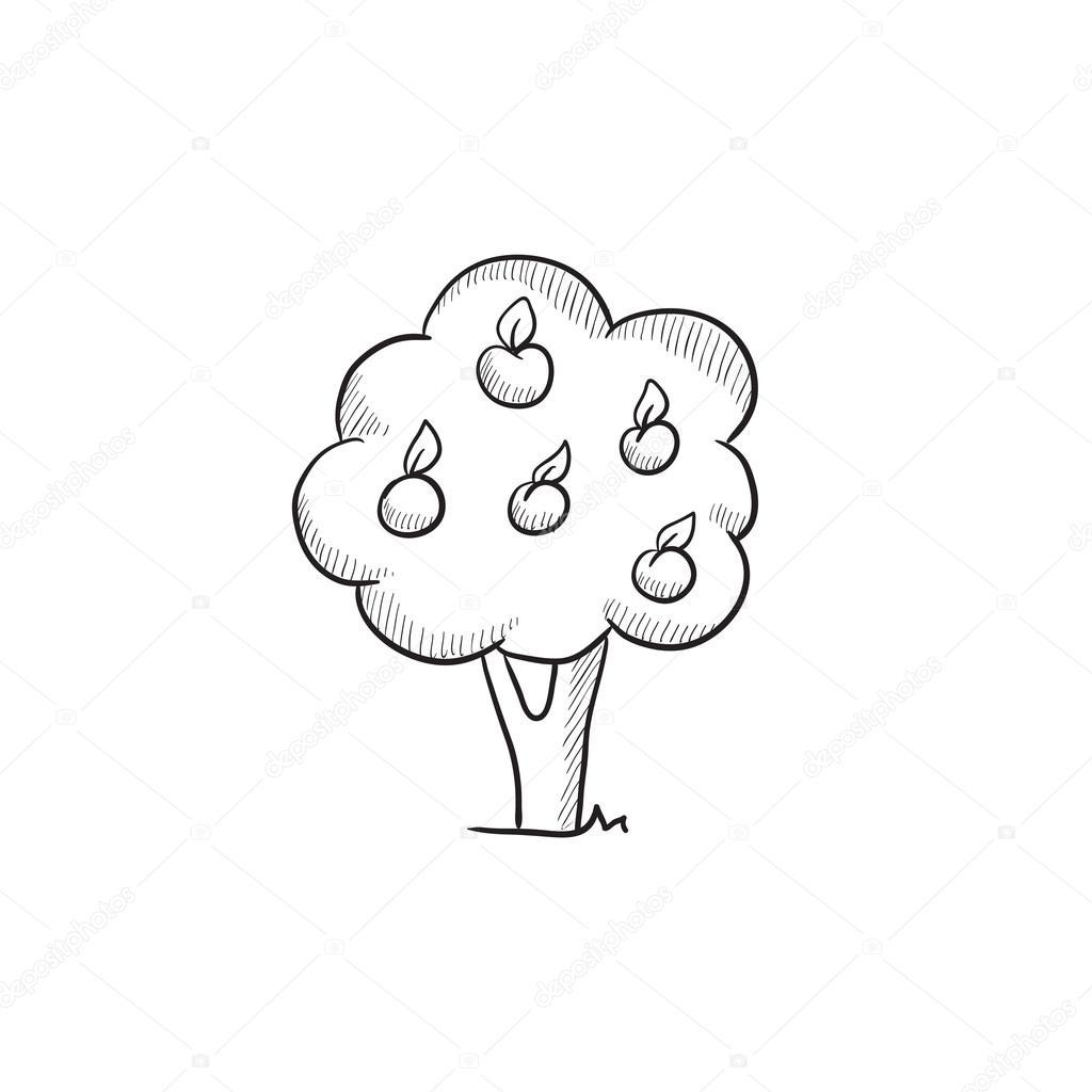 ícone De Desenho De árvore De Fruto Vetores De Stock Rastudio