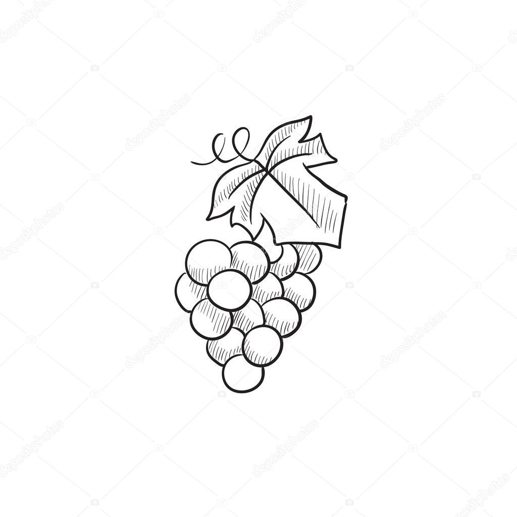 Racimo de uvas dibujo icono — Archivo Imágenes Vectoriales ...