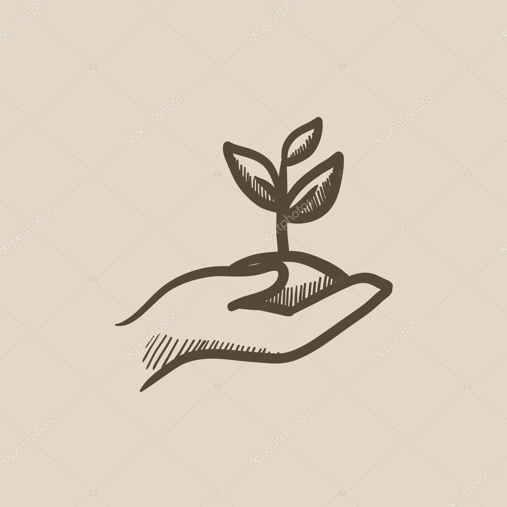 Hände halten Sämling im Boden-Skizze-Symbol — Stockvektor © rastudio ...