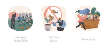 Home gardening abstract concept vector illustration set. Growing vegetables, garden pests, harvesting, planting in ground, organic food, container garden, plant insects, pesticides abstract metaphor. icon