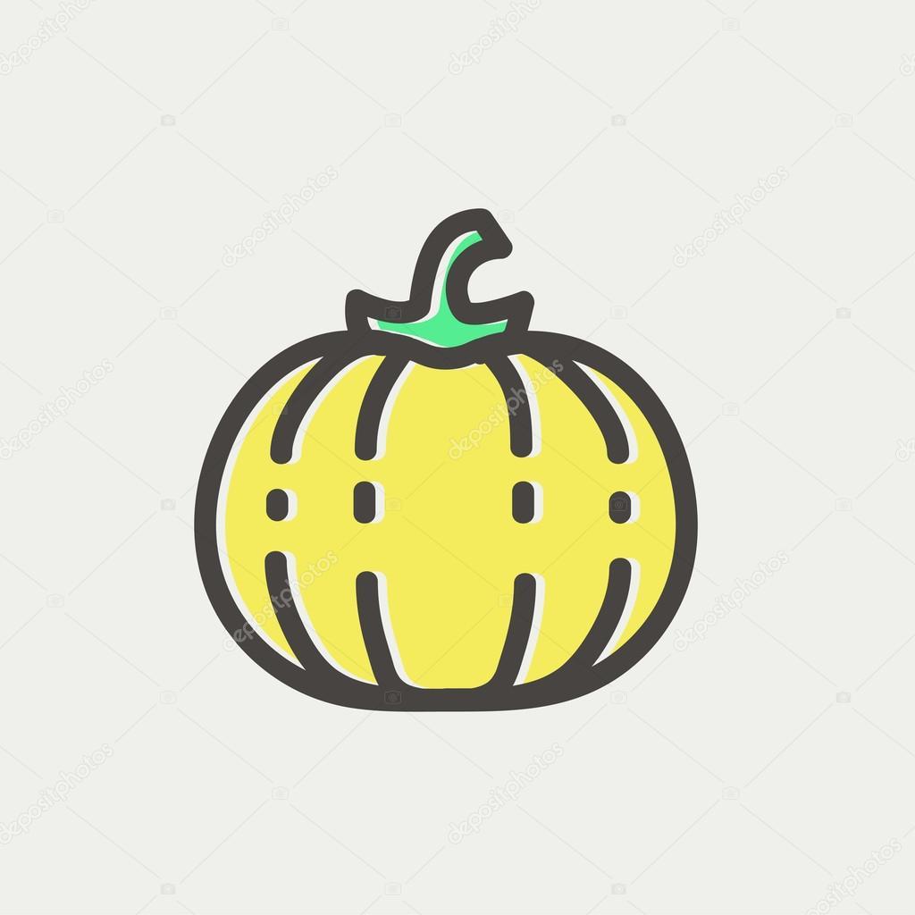 Squash thin line icon