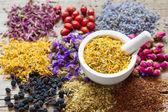 Minomet květy měsíčku, sortimentu bylinkový čaj a bobule
