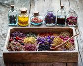 Různé léčivé byliny v dřevěné krabici na stole, bylinné medicíně