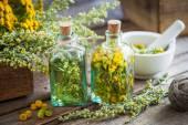 Tinktur Flaschen Rainfarn und Estragon gesunde Kräuter, Absinth h