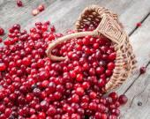 Čerstvé červené brusinky a bobule v koši na starý stůl