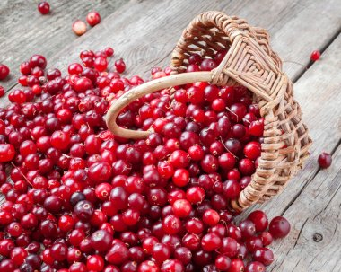 Fresh red cranberries and berries  in basket on old table